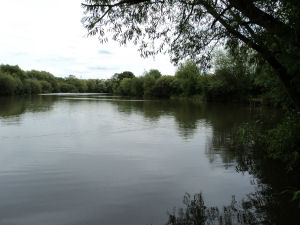Staddlethorpe Pond